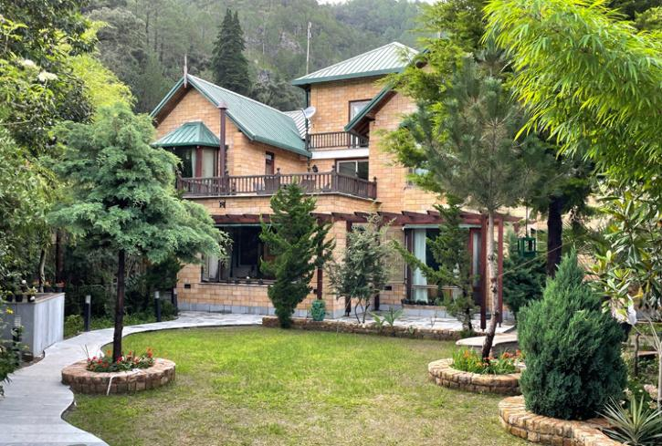 pet friendly hotel, villas and homestays that allow pets