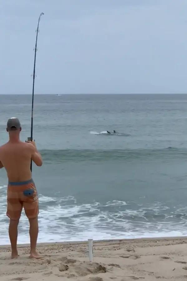 man hooking a great white shark