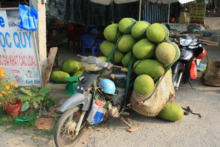 motorbike with jackfruits
