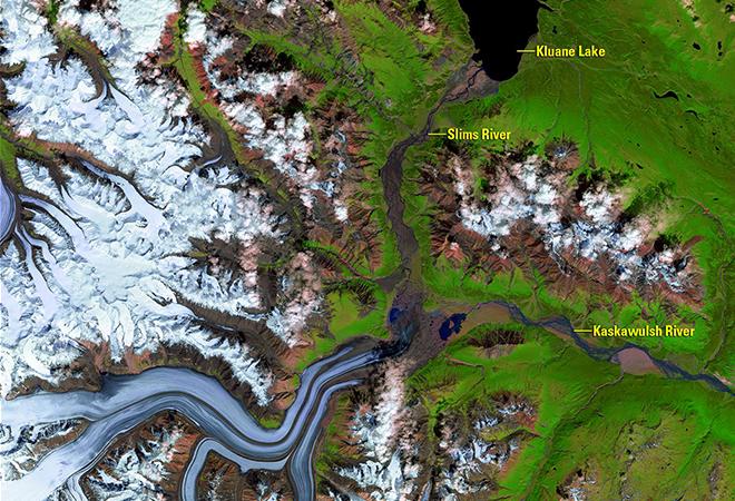Kaskawulsh glacier meltwater alters downstream ecosystems (August 3, 2015 - July 4, 2016)