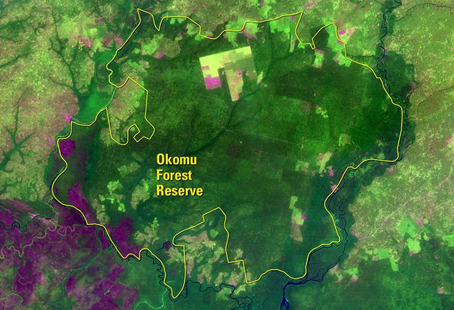 Human activity threatens Nigeria's Okomu Forest (December 11, 1984 - January 4, 2017)