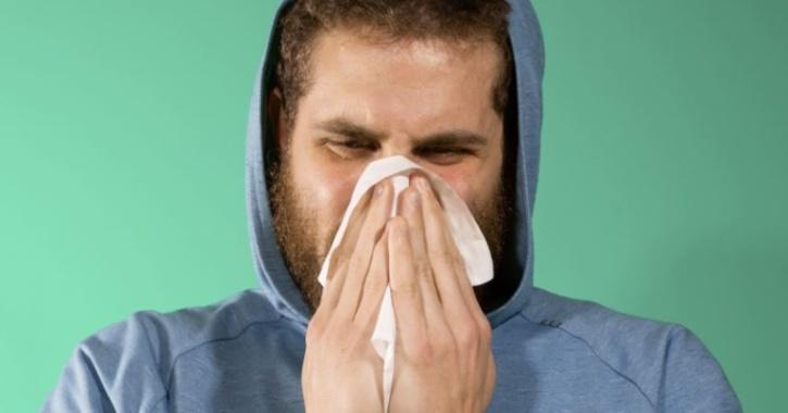 coronavirus common cold future
