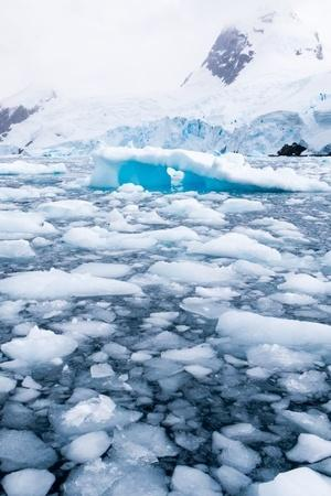 Ice melt Antarctic Greenland