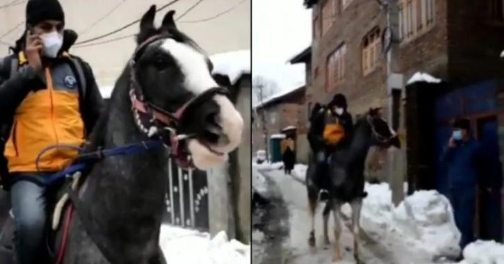 Amazon delivery person in Srinagar made waves on social media after using a horse to deliver packages.