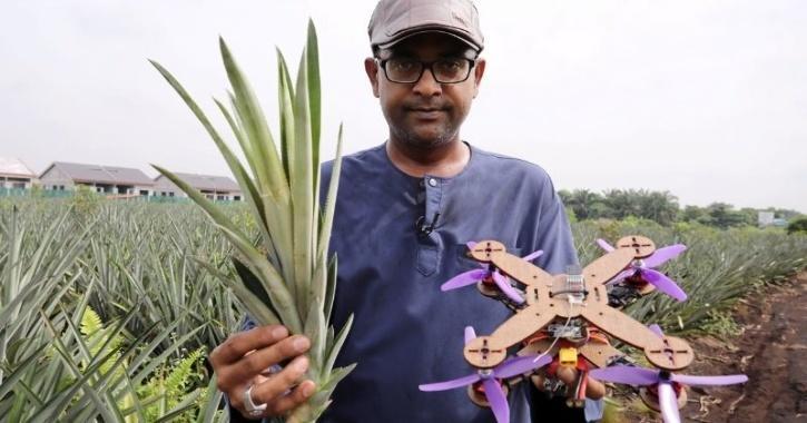 biodegrabale drones
