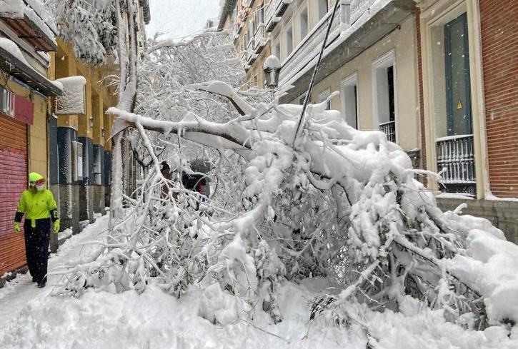 1 day ago Reuters Heaviest snowfall in decades blankets Madrid