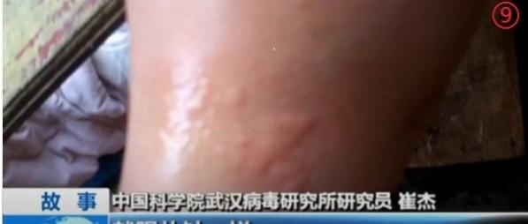 World Health Organization (WHO) arrived in China to probe the origin of the coronavirus