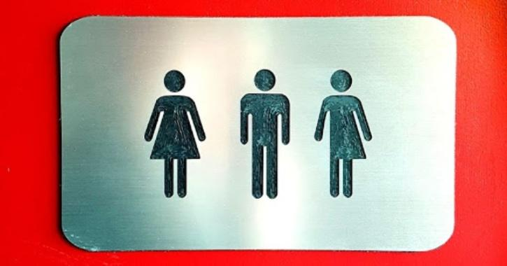 transgender public