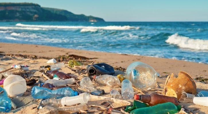 plastic waste decompose