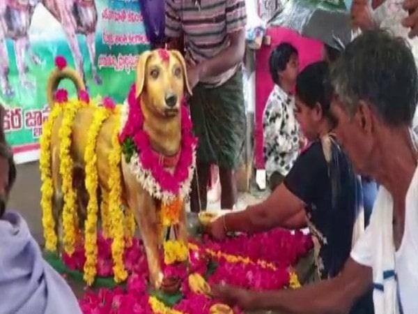 Andhra Man Erects Bronze Statue of His Late Dog