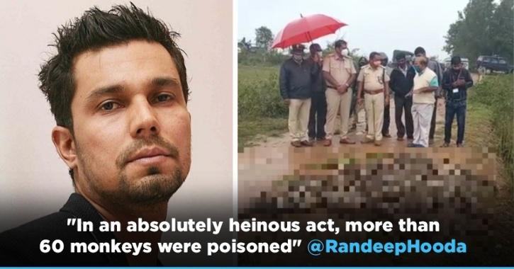 Randeep Hooda Appeals To Karnataka CM For Action Against Poisoning Of 60 Monkeys In The State