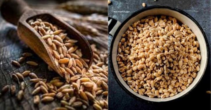 whole grain diet