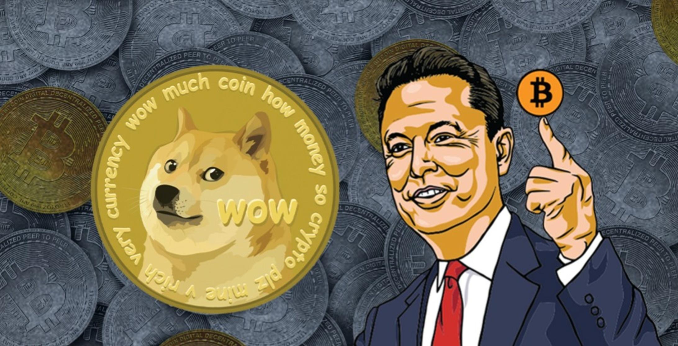 Come comprare Dogecoin   I migliori wallet DOGE   Invezz