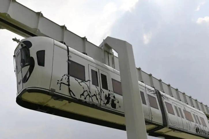 Glass-bottomed panda train