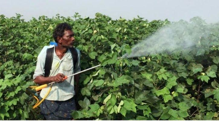 soil health insecticides epa