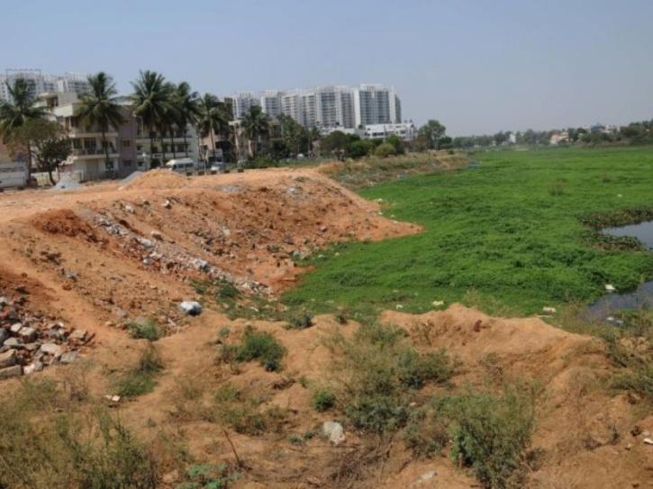 Singanayakanahalli lake, Bengaluru