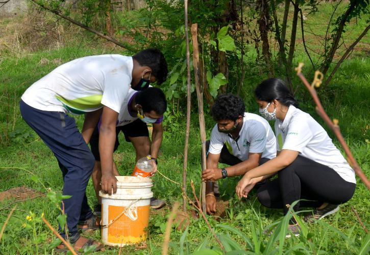 Plantation in Ludhiana