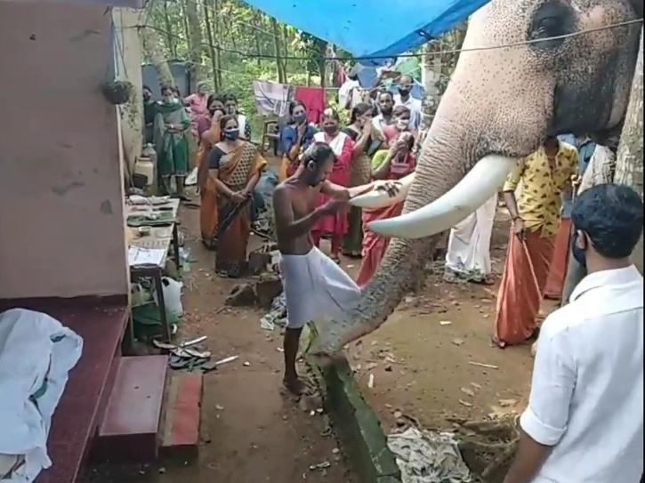 Elephants pays final respects to his mahout