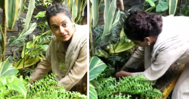 Kangana Ranaut Takes Part In Tree Plantation Activity, Gets Trolled For Not Wearing Mask Again