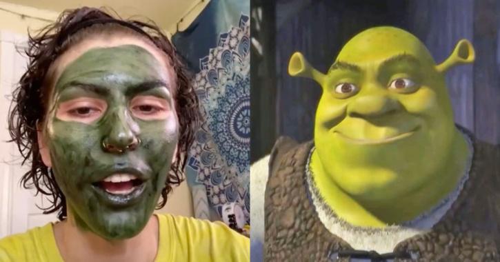 Woman ends up looking like Shrek  a