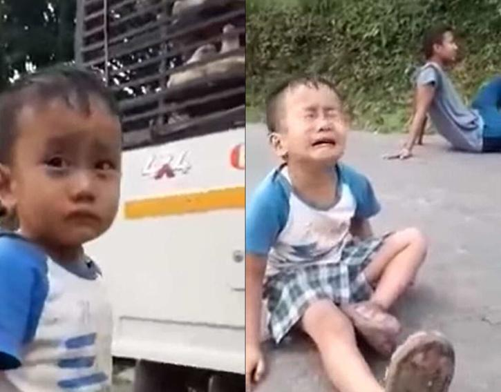Sikkim boy cries as chickens he raised are taken away