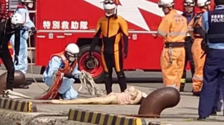 Sex doll rescued