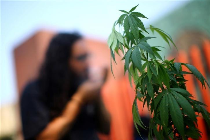 Mexico cannabis bill