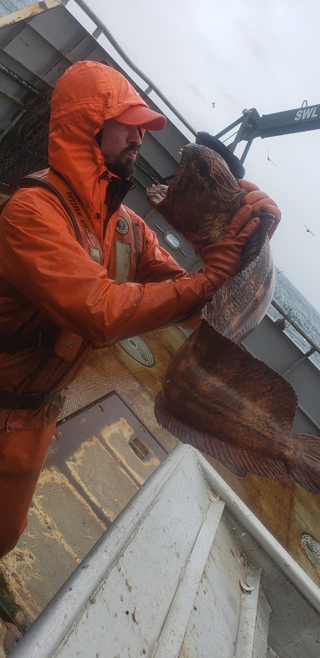 Bizarre sea creature caught in Alaska