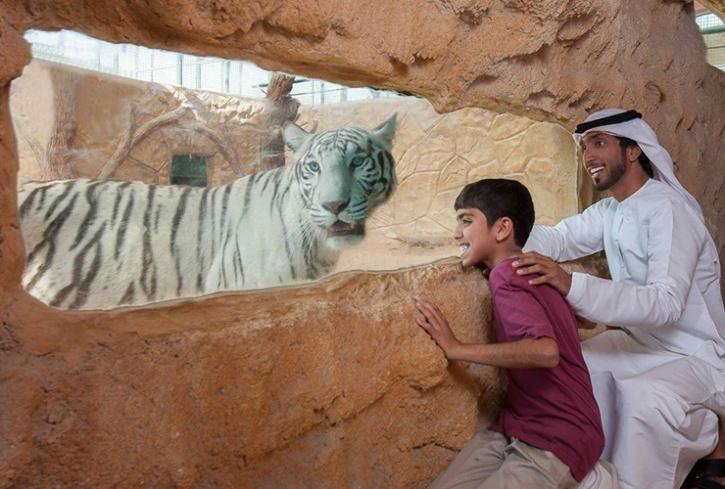 parks in Abu Dhabi, places to visit in Abu Dhabi. Abu Dhabi holiday