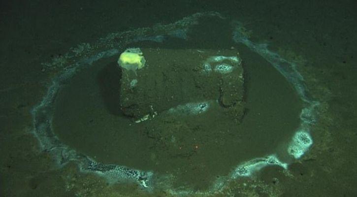 underwater roomba