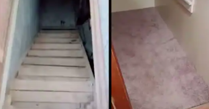 Woman discovers 'creepy basement' she never knew existed after pulling up her old carpet Martha Cliff