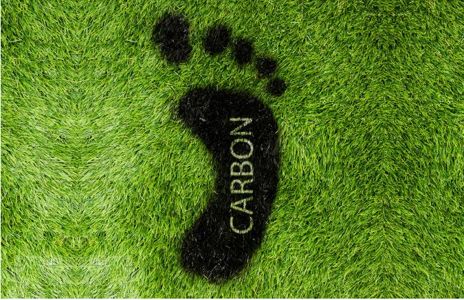 Indian Food Has Lowest Carbon Footprint