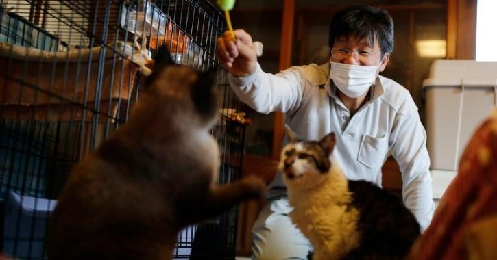Sakae Kato plays with cats that he rescued called Mokkun and Charm