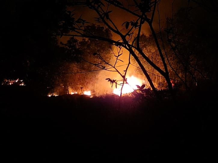 Similipal Tiger Reserve Wildfire