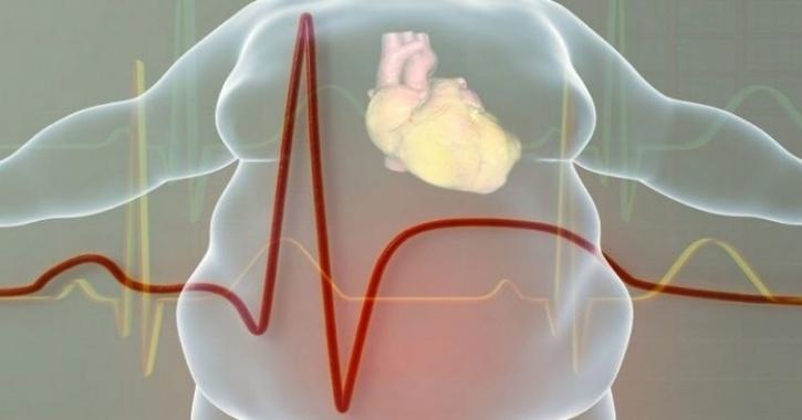 women fat heart health
