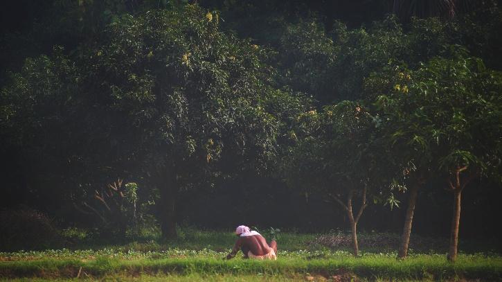 Indian farmer working on his field in Bihar