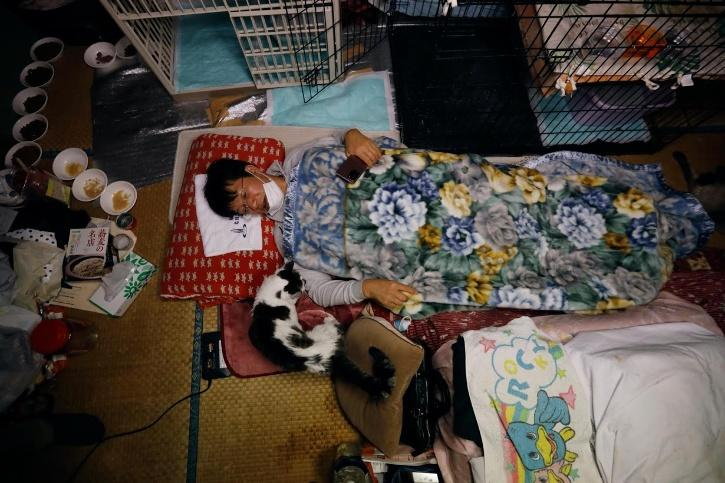 , Sakae Kato stayed behind to rescue cats abandoned by neighbours