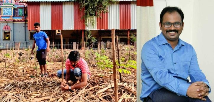 IAS Officer Planting Trees