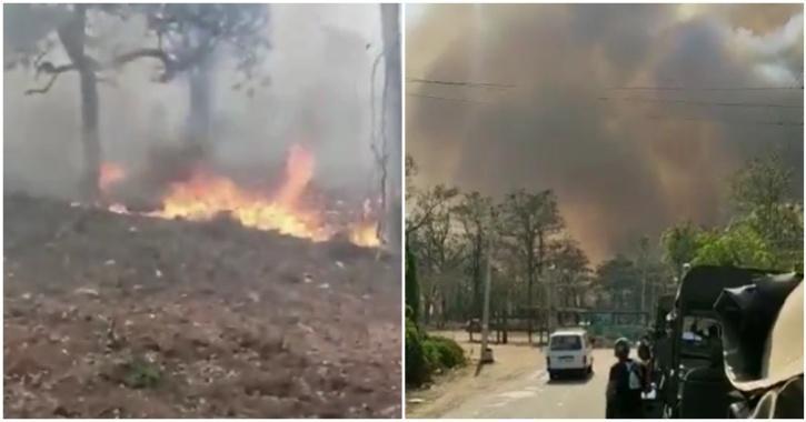 Nagarhole forest fire