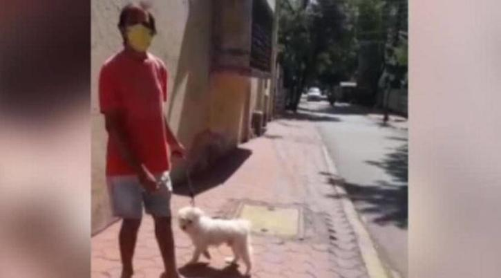 Dog arrested in Indore