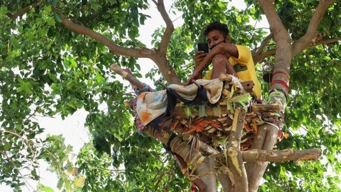 This Telangana youth, who tested positive for the virus on May 4, had no option but to build himself an isolation ward, a bed, on top of a tree in the area around his house.
