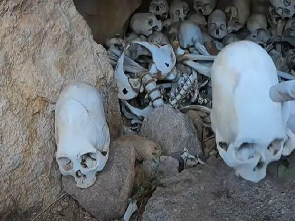 Theorists believe that the cone-shaped skulls are actual proof that aliens have visited earth.