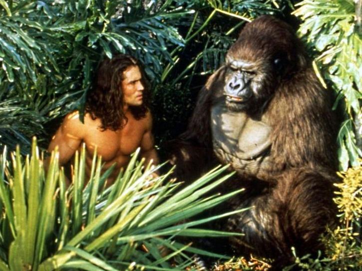 Joe Lara in Tarzan: The Epic Adventures died in a plane crash.