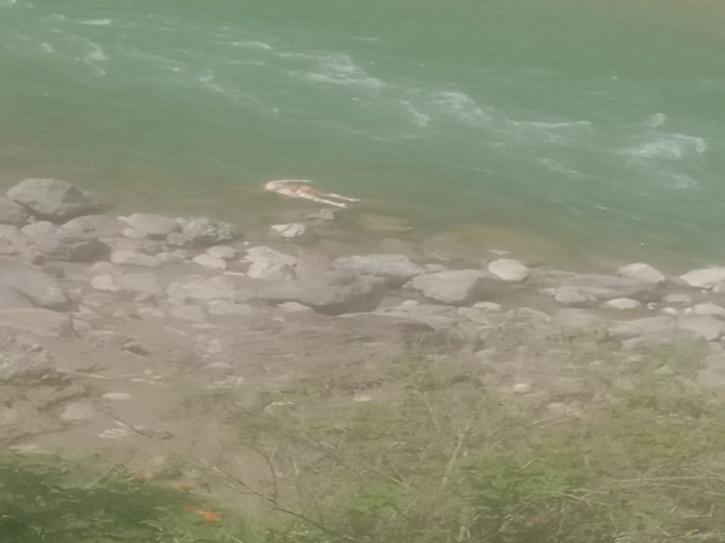 Bodies Wash Ashore In Uttrakhand