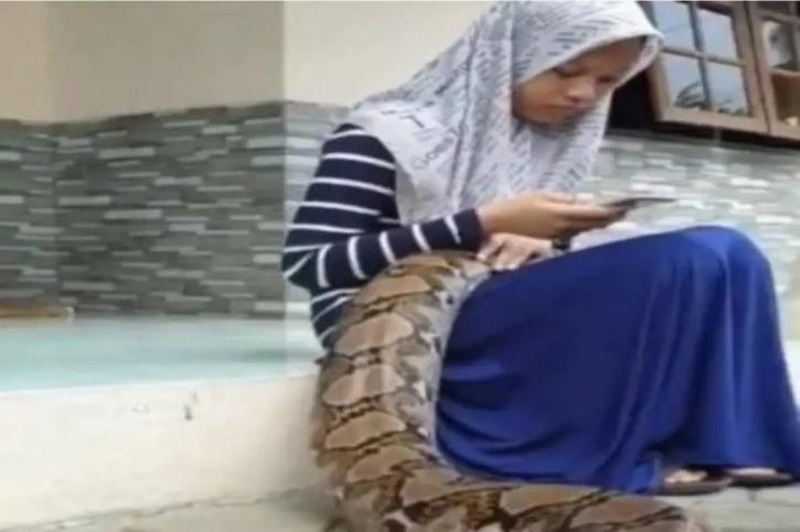 Python Sleeps On Girl's Lap