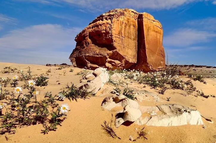 Al Naslaa rock
