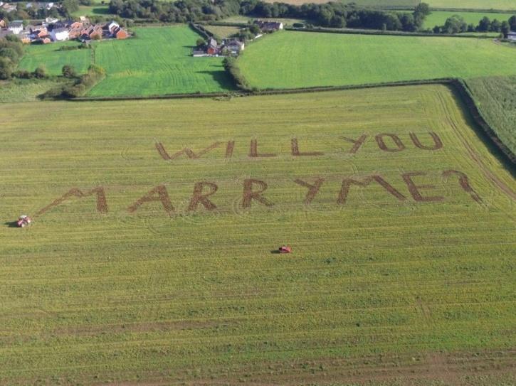 proposal on field