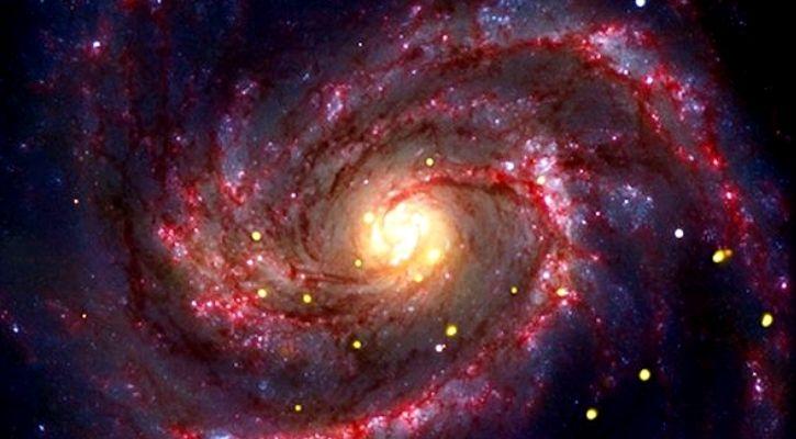 black hole premature supernova