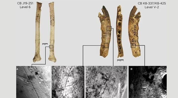contrebandiers cave bones