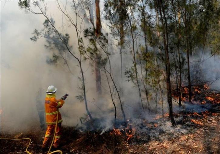 Prolonged drought and high temperatures in Australia led to an outbreak of massive wildfires in 2019-20.